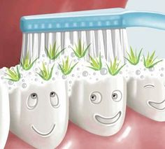 Oral care with Aloe Vera toothgel