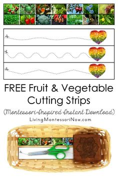 These free Montessori-inspired fruit and vegetable cutting strips are an instant download with a variety of skill levels; scissor cutting practice for classroom or home! You'll get cutting strips with 7 photographs of fruits and 7 photographs of vegetables along with a second page with a heart-shaped eat-a-rainbow collage to encourage healthy eating - Living Montessori Now Cutting Activities, Fine Motor Activities For Kids, Toddler Learning Activities, Montessori Activities, Montessori Quotes, Maria Montessori, Different Fruits, Different Vegetables, Fruits And Vegetables