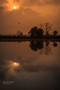LIGHT by Aey Sakchai on 500px
