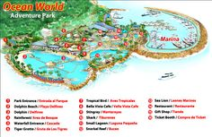 Viator | Ocean World Puerto Plata Day Pass, in Puerto Plata ...
