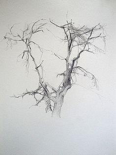 family tree pencil drawing - Buscar con Google