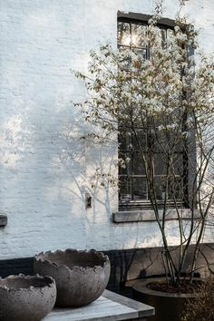 Pergola, Patio Gazebo, Backyard Patio, Dream Garden, Home And Garden, Outside Patio, Outdoor Living, Outdoor Decor, Photo Backgrounds