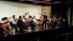 27 November 2016 (16:56) / Strings Orchestra of CAMERATA CANTAREIRA, conducted by MARCELO JAFFÉ; Chamber Music Concert at Auditório Alfredo Mesquita, Pinacoteca do Estado de São Paulo.