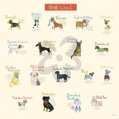 Dog Chart - Dogs & Cats Canvas Wall Art | Oopsy daisy
