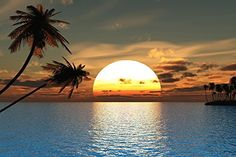 Amazon.com: Picture Sensations Canvas Texture Wall Mural, Seascape Tropical Sunset Ocean Palm Tree, Self-adhesive Vinyl Wallpaper, Peel & Stick Fabric Wall Decal - 48x36: Home & Kitchen