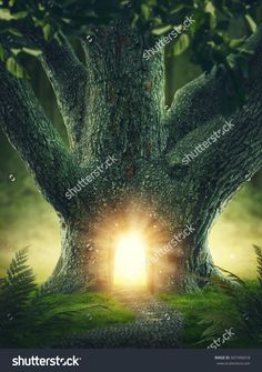 Magic tree with the gateway