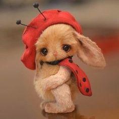 A real cutie! Needle Felted Animals, Felt Animals, Needle Felting, Animals And Pets, Baby Animals, Cute Animals, Cute Fantasy Creatures, Cute Stuffed Animals, Rabbit Toys