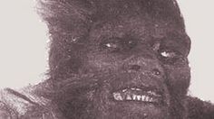 The Almas or the hairy bipedal hominid of Central Asia. Man sized, purportedly lives in caves.