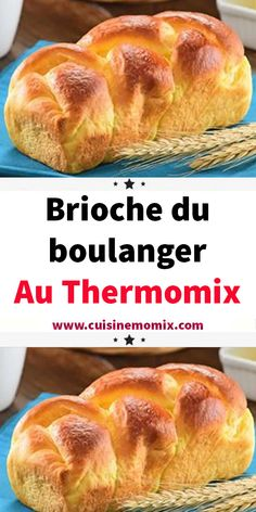 bread recipes artisan ~ bread recipes _ bread recipes homemade _ bread recipes easy _ bread recipes easy no yeast _ bread recipes homemade easy _ bread recipes no yeast _ bread recipes without yeast _ bread recipes artisan Artisan Bread Recipes, Easy Bread Recipes, Chicken Recipes, Quick Bread, Easiest Bread Recipe No Yeast, No Yeast Bread, Baked Camembert, Creme Dessert, Thermomix Desserts