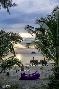koh-chang-reisetipps-die-besten-tipps-attraktivitaten/ - The world's most private search engine Phuket, Koh Samui Thailand, Chiang Mai Thailand, Thailand Honeymoon, Thailand Travel Tips, Koh Chang, Bangkok, Top Destinations, Holiday Destinations