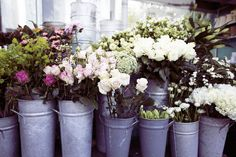 Flower market early morning, Notting Hill.