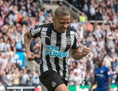 Dwight Gayle celebrates after firing Newcastle United into a deserved lead over Chelsea 23 minutes into the first half Dwight Gayle, Newcastle United Fc, Antonio Conte, St James' Park, Fa Cup, Big Game, Football Soccer, Chelsea, Celebrities
