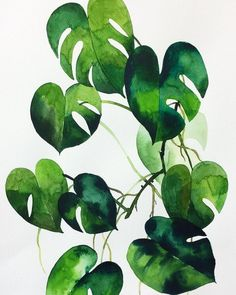 Drawing Art Nature Artists 66 Ideas For 2019 – bilderrahmen Watercolor Paintings Nature, Watercolor Painting Techniques, Watercolor Plants, Nature Drawing, Watercolor Leaves, Watercolour Art, Drawing Art, Green Watercolor, Drawing Ideas