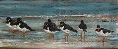 Oystercatchers by Steven Ferguson at Wallpiece.co.uk