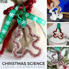 Christmas Crystal Gingerbread Man Science Activity for Kidshttp://littlebinsforlittlehands.com/christmas-crystal-gingerbread-man-science-activity/er