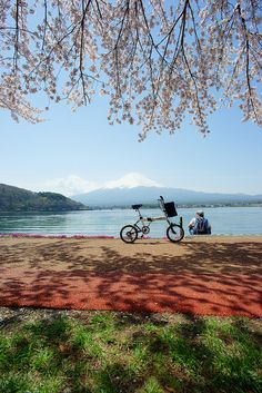 Lake Kawaguchi and Mt. Fuji, Japan