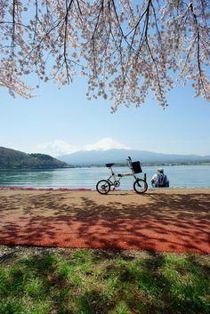 Lake Kawaguchi and Mt. Fuji, Japan