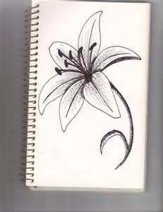 how to draw a star lily - Yahoo! Image Search Results