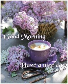 Have a nice day day good morning good morning images good morning image quotes good morning pictures Good Morning Coffee Images, Good Morning Flowers, Good Morning Picture, Good Morning Greetings, Good Morning Good Night, Good Morning Friends Quotes, Good Morning My Friend, Good Day Quotes, Morning Quotes