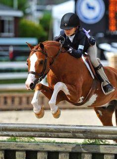 Zayna Rizvi and Rollingwoods Knee Deep Norfolk Hunt Show, Small Pony Hunter Champion