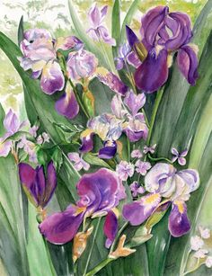 Irises in the garden by Nadine Dennis.  Watercolor