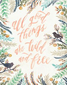 Wild and Free // Wildfield Paper Co. #handlettering