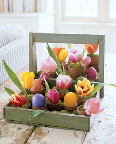 Easter Tray of Potted Eggs and Spring Bulbs