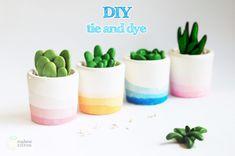 succulent DIY using playdoh and modpodge Diy Tie N Dye, Papercrete, Diy Calendar, Creation Deco, Diy Clock, Succulents Diy, Succulent Pots, Painted Pots, General Crafts