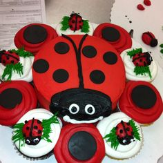 Lady Bug cake and cupcakes for birthday!