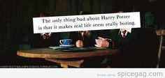 The only bad thing about Harry Potter