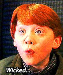 Unser nächster Halt mit dem Hogwarts Express: Das Harry Potter Festival