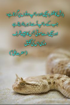 Agar Kisi Ka Zarf Azmana Ho ll Hazrat Ali Quotes in Urdu – Quotation Mark Prophet Muhammad Quotes, Hadith Quotes, Imam Ali Quotes, Quran Quotes, Quotes Quotes, Motivational Quotes, Truth Quotes, Deep Quotes, Qoutes