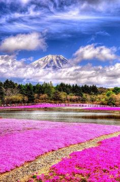 Lake Motosu, Yamanashi, #Japan