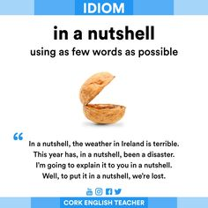 in a nutshell, has been awful. IDIOM - in a nutshell English Sentences, English Idioms, English Phrases, English Writing, English Lessons, English Grammar, English Help, Learn English Words, English Vinglish