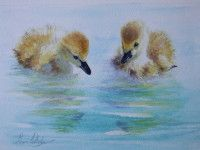 Two Little Ducklings Watercolour Painting, Watercolors, Class Projects, Natural Forms, Bird Art, Birds, Draw, Ducks, Nature