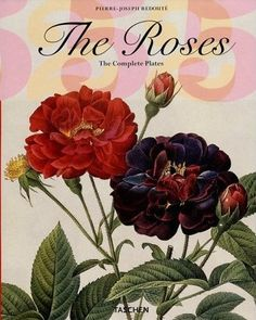 roses cover