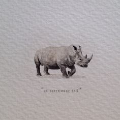 Day 267 : A little bit of Africa, painted in India. 25 x 11 mm. #365paintingsforants #miniature #watercolor #white #rhinoceros