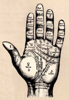 palm reading diagram / palmistry and chiromancy