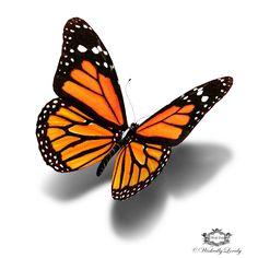 Monarch Butterfly 3d butterfly tattoo by WickedlyLovelyArt on Etsy