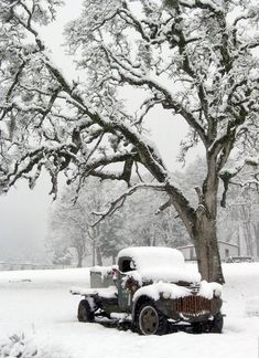 Snow Covered Car..