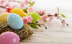 Hapy Easter Pink Flowers And Eggs Wallpaper Ostern Wallpaper, Hd Wallpaper, Pastel Wallpaper, Wallpapers, Easter Quotes, Easter Religious, Deco Originale, Coloring Easter Eggs, Easter Colors