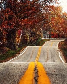 Turn left, turn right… either way it's gonna be a long bumpy road ahead (at Autumn Run Smithfield Ri)