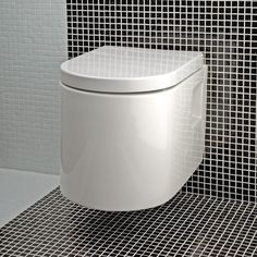 Master bath - wall mounted toilets