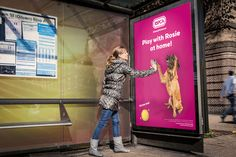 Interactive shop window WITH TECHNOLOGY to promote the dogs adoption