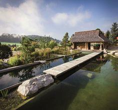 Natural Pool by Balena GmbH | HomeDSGN