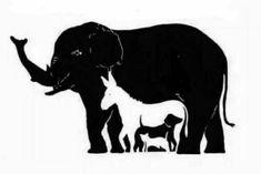 Wie viele Tiere kannst Du in diesem Bild erkennen?