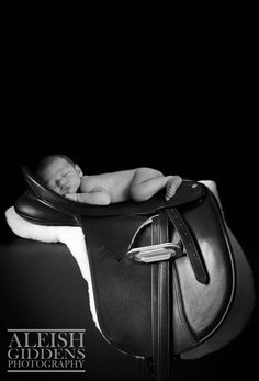 My little man lying on Nana's dressage saddle. I seriously love this photo. Our photographer was amazing and made our newborn photoshoot so stress free! Newborn Photos, Baby Photos, Dressage Saddle, New Mums, Stress Free, Little Man, Newborn Photography, Maternity, Mac