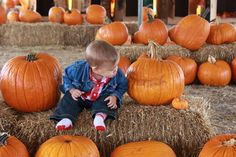 """Now where did that little punkin go?"""