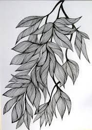 Image result for leaves drawing