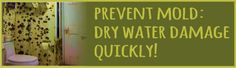 Prevent Mold Growth: Keep It Dry! - EMERGENCY WATER AND SMOKE REMOVAL BLOG - Atlanta Fire, Water & Storm Damage Restoration | Champion Const...